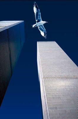 World Trade Center 1999
