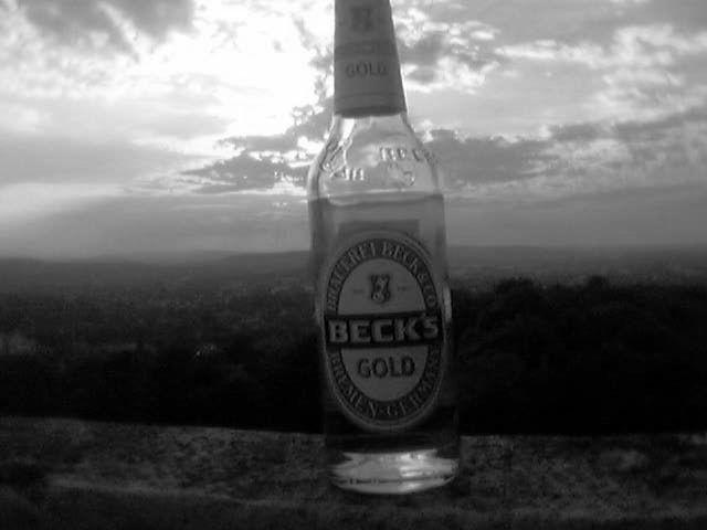 world wide beer