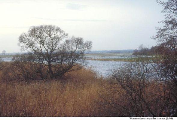 Worpswede - Winterhochwasser an der Hamme