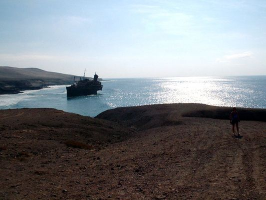 Wrack vor Fuerteventura