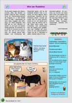 WSH Seite 2
