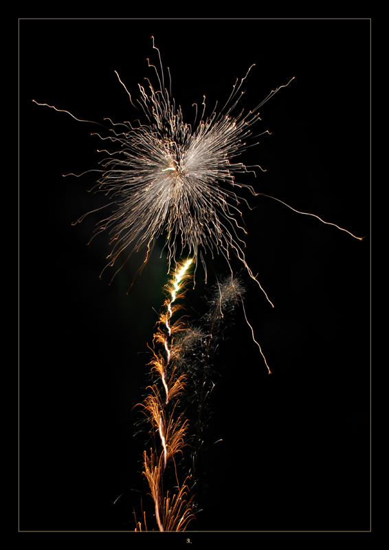 Wünsche allen ein frohes neues Jahr...