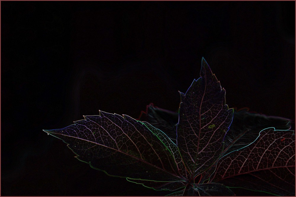 Wünsche euch allen einen schönen Herbstanfang