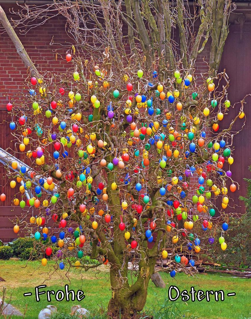-Wünsche ich, mit diesen herrlich geschmückten Eierbaum-