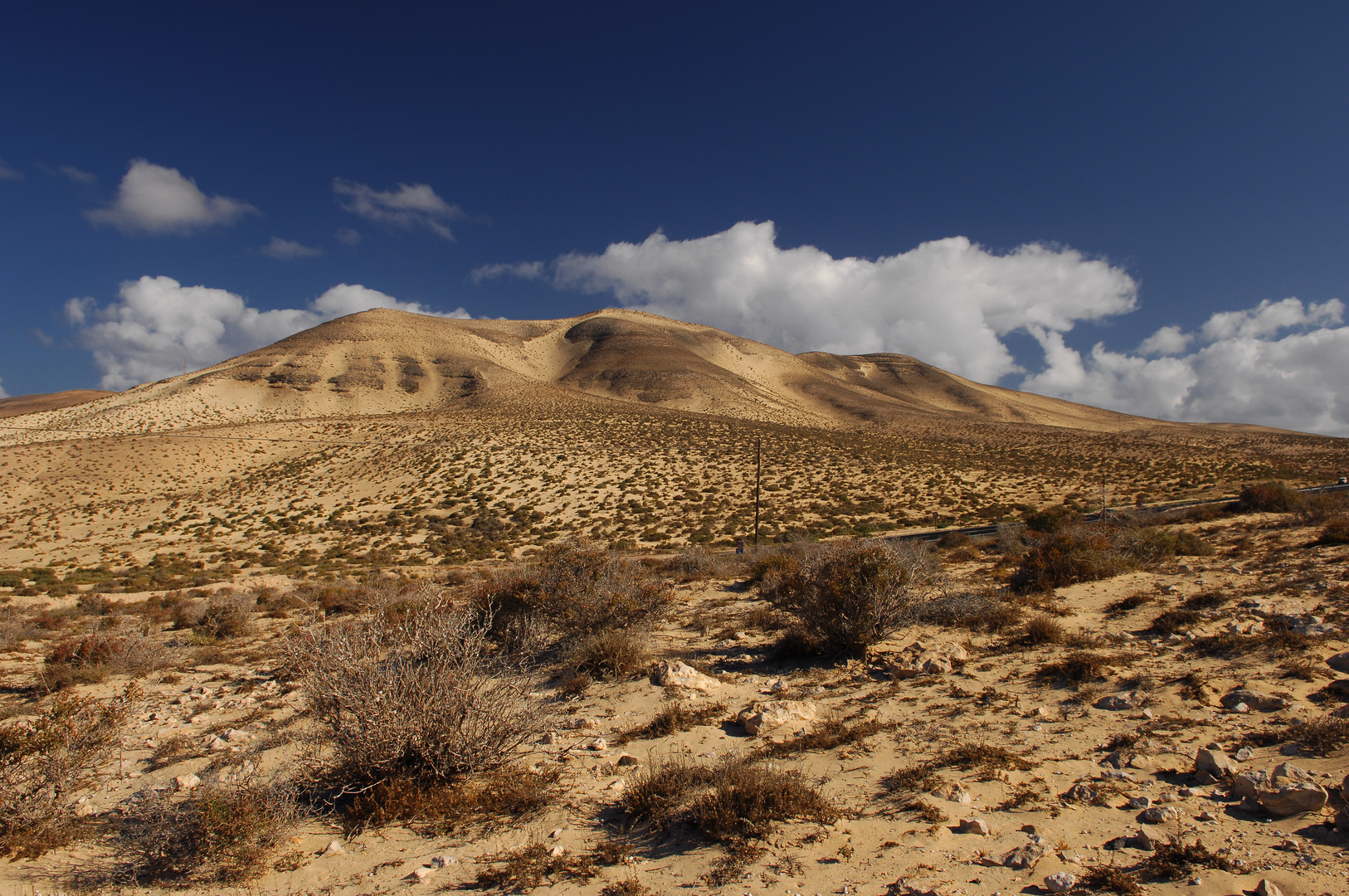 Wüste?