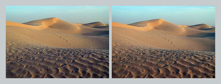 Wüste 3D