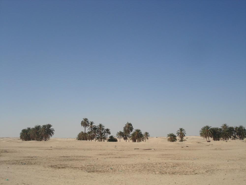 Wüste bei Douz, dem Tor zur Sahara