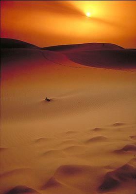Wüste bei Erg Chebbi Marokko
