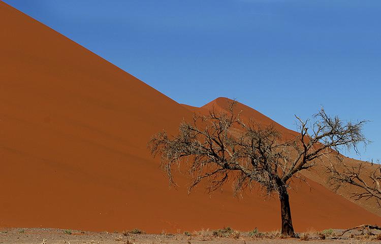 Wüste eben