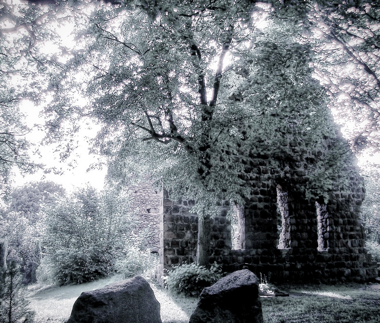Wüste Kirche in der Uckermark -01