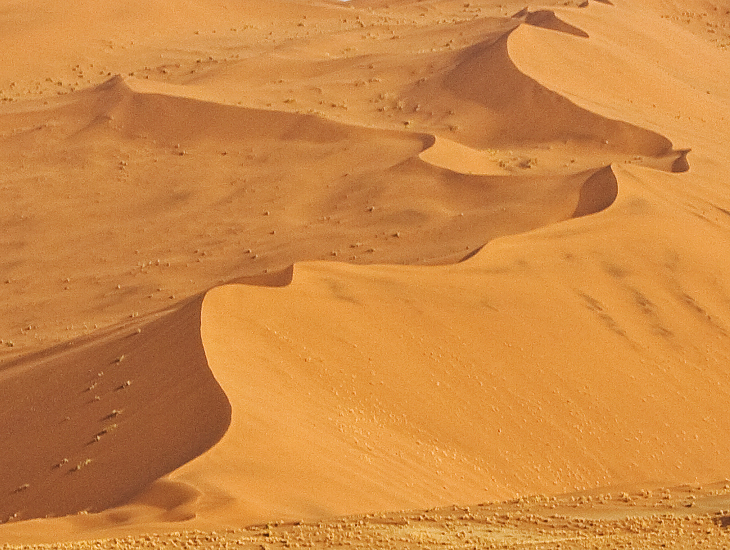 Wüste Namib 2