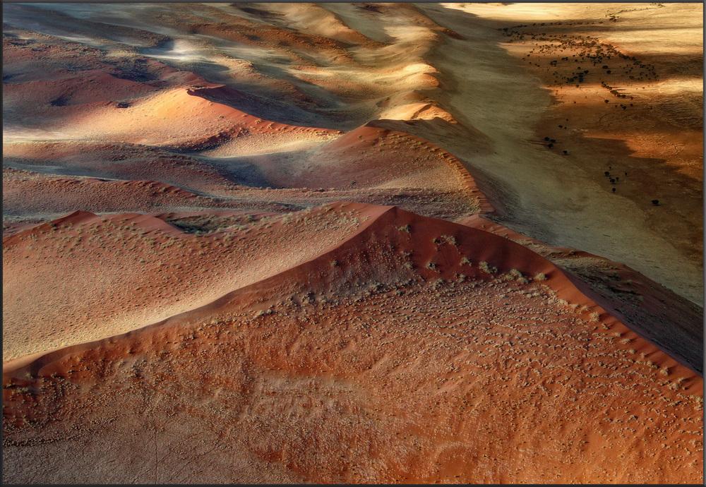 Wüste Namib 2010