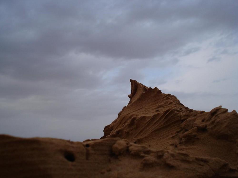 Wüste Thar nach Regen