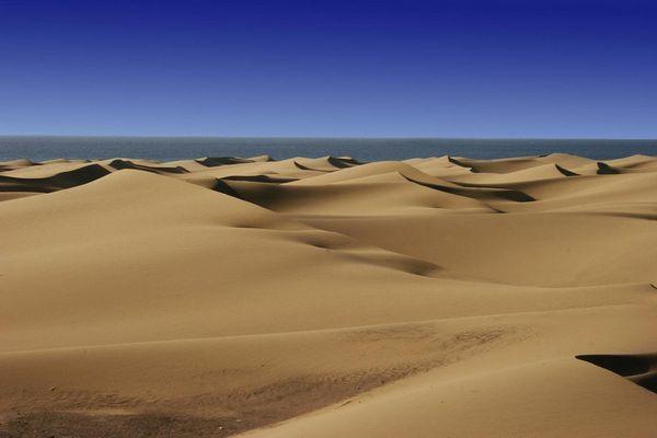 """Wüste von """"Gran Canaria"""" 2007"""