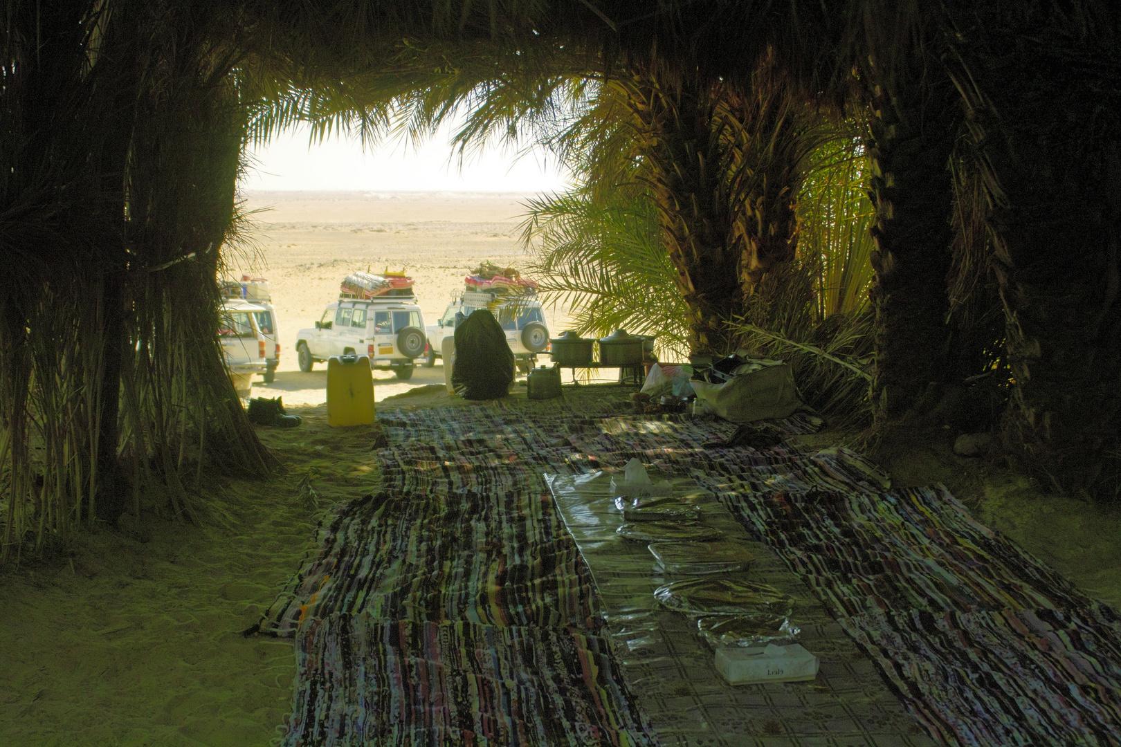 Wüsten-Picknick