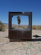 Wüsten-TV