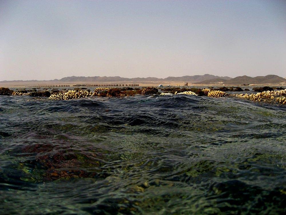Wüstenblick vom Riff aus ....