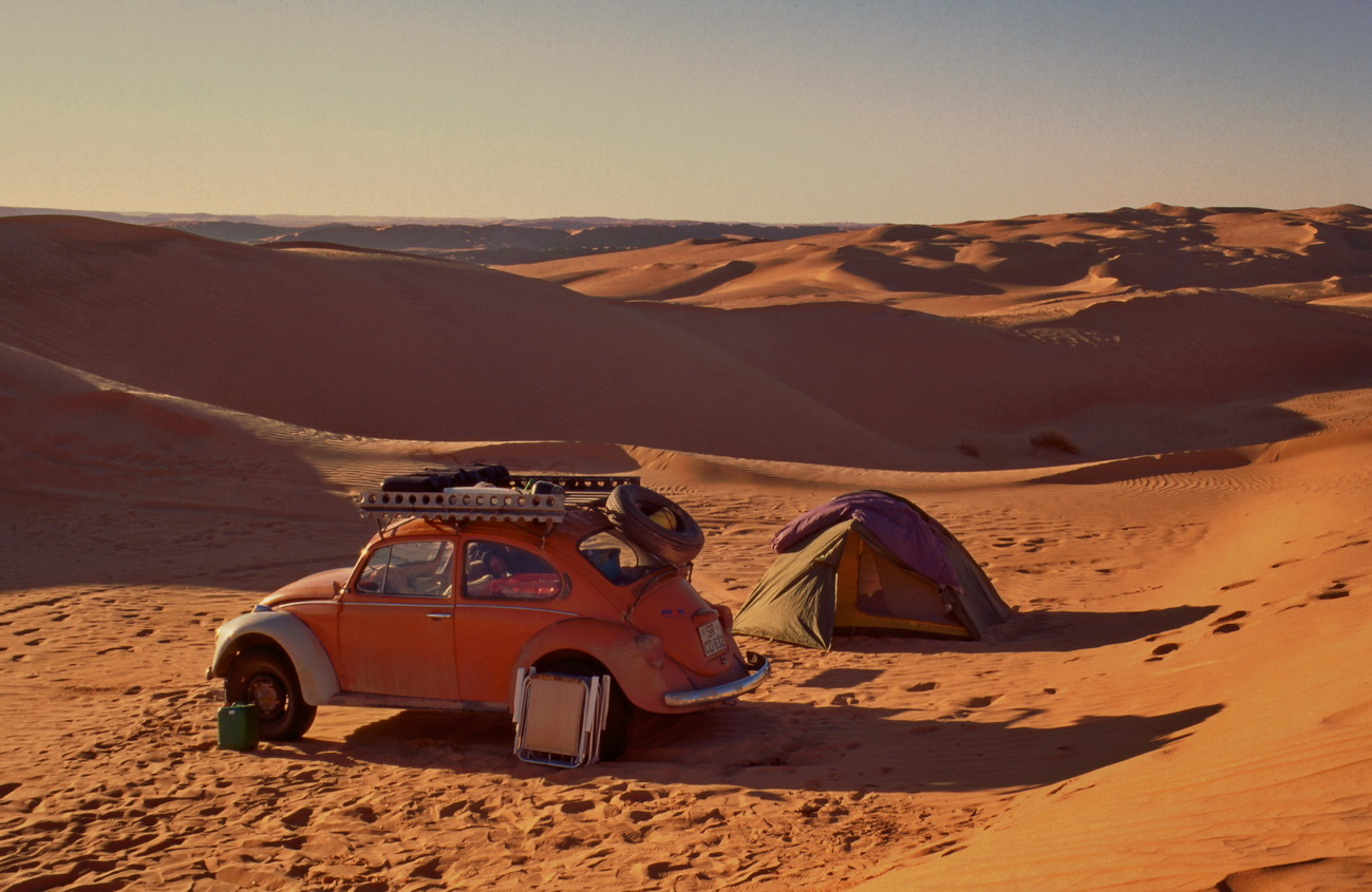 Wüstenkäfer und Wüstencamp