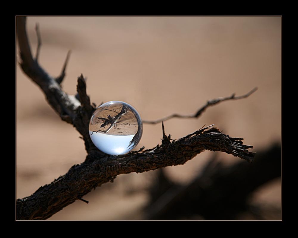 Wüstenkugel