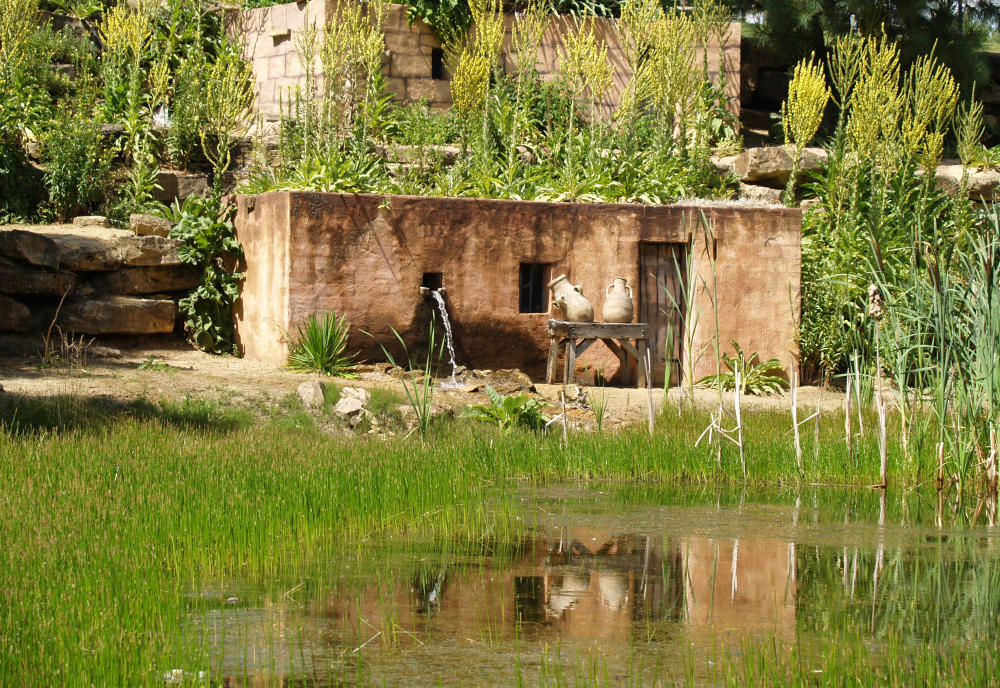 Wüstenlandschaft in Mondo Verde