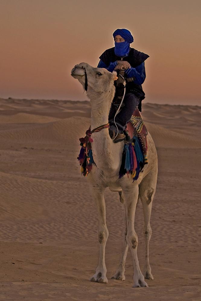 Wüstenprinz