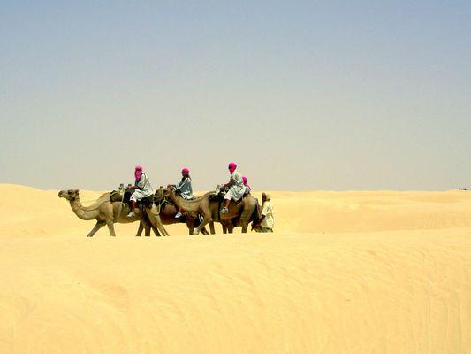 Wüstenschiffe