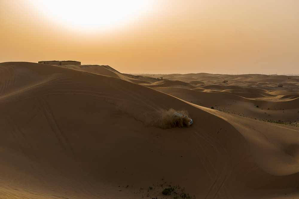 Wüstenwahnsinn