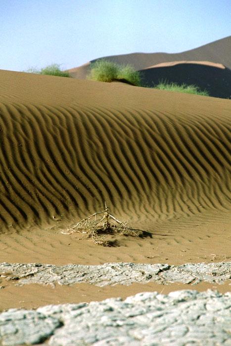 Wüstes Profil
