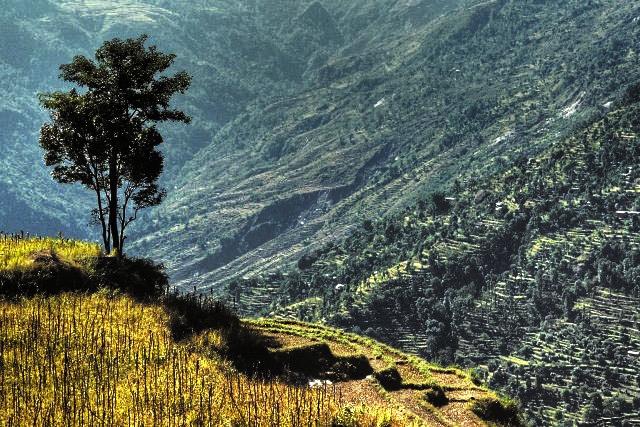 Wunderbare Stille in Nepal