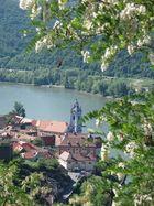 wunderbare Wachau
