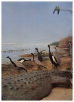 Wunderbare Welt der Tiere -3-