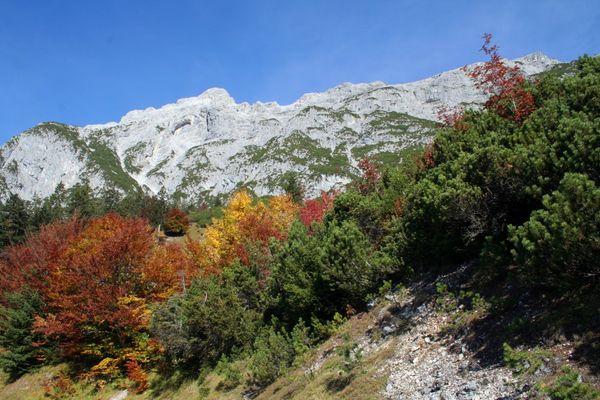Wunderschöe Farben im Herbst