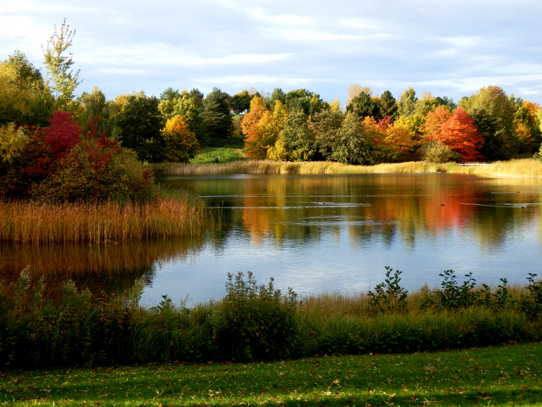 Wunderschöne Herbstfärbung!