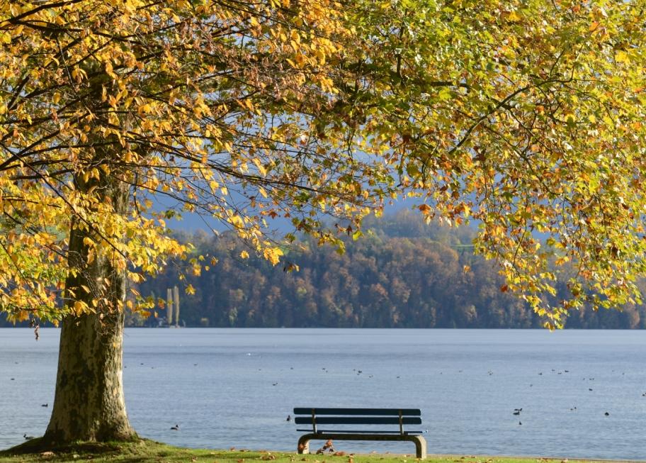 wunderschöne Herbstruhe