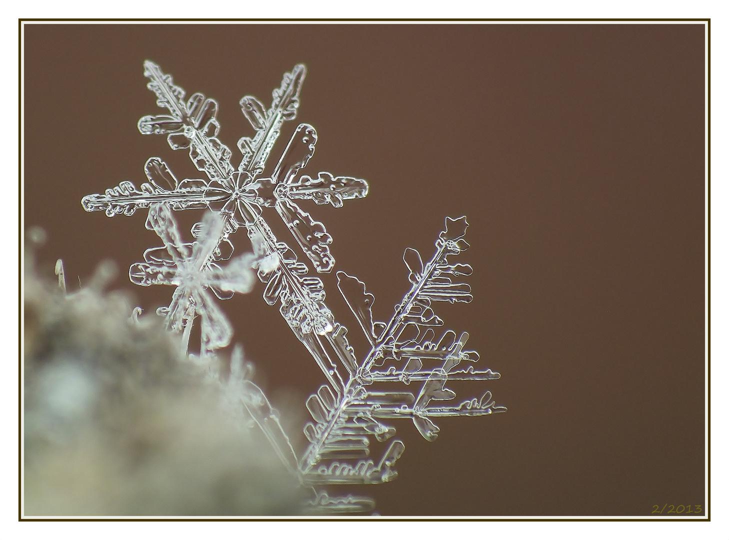 Wunderschöne Schneeflocke