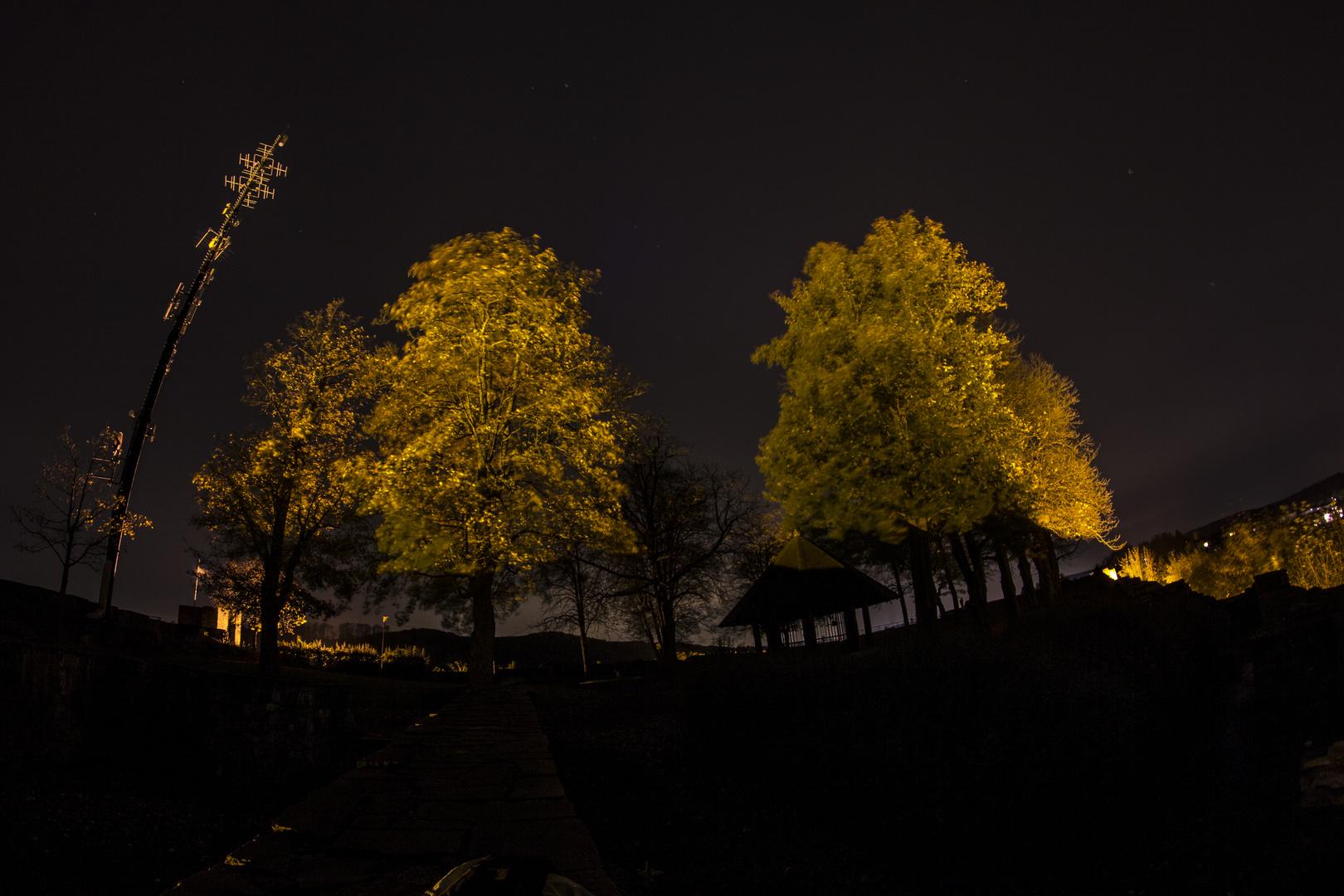 Wunderschöner Abend bei Sternenhimmel