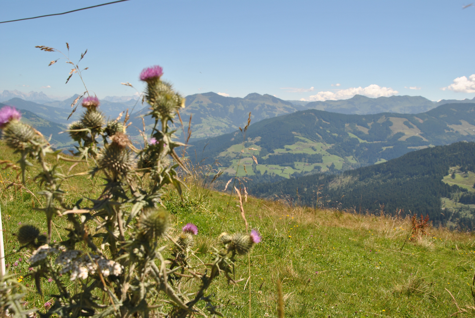 Wunderschöner Ausblick vom 1300 Meter hochgelegeenen Markbachjoch