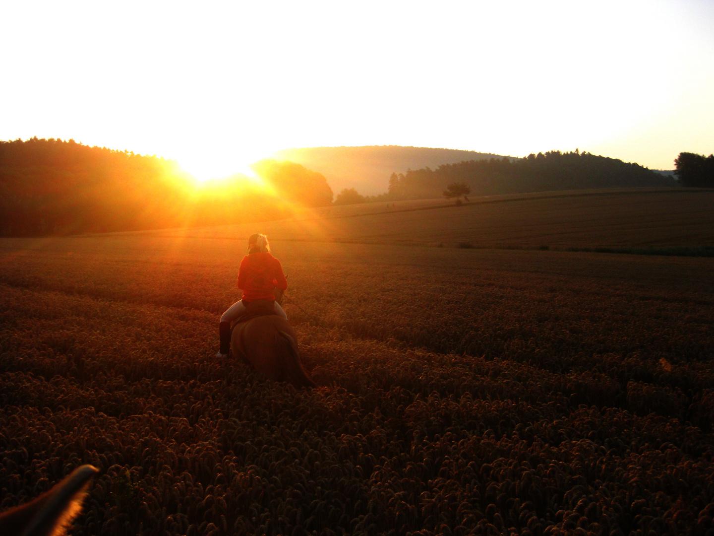 wunderschöner früh morgendlicher Ausritt