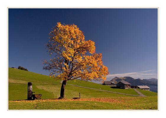 Wunderschöner Herbsttag!!!