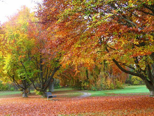 Wunderschöner Oktober