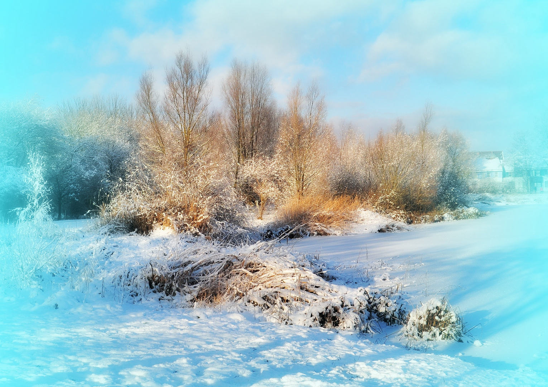 Wunderschöner Winter