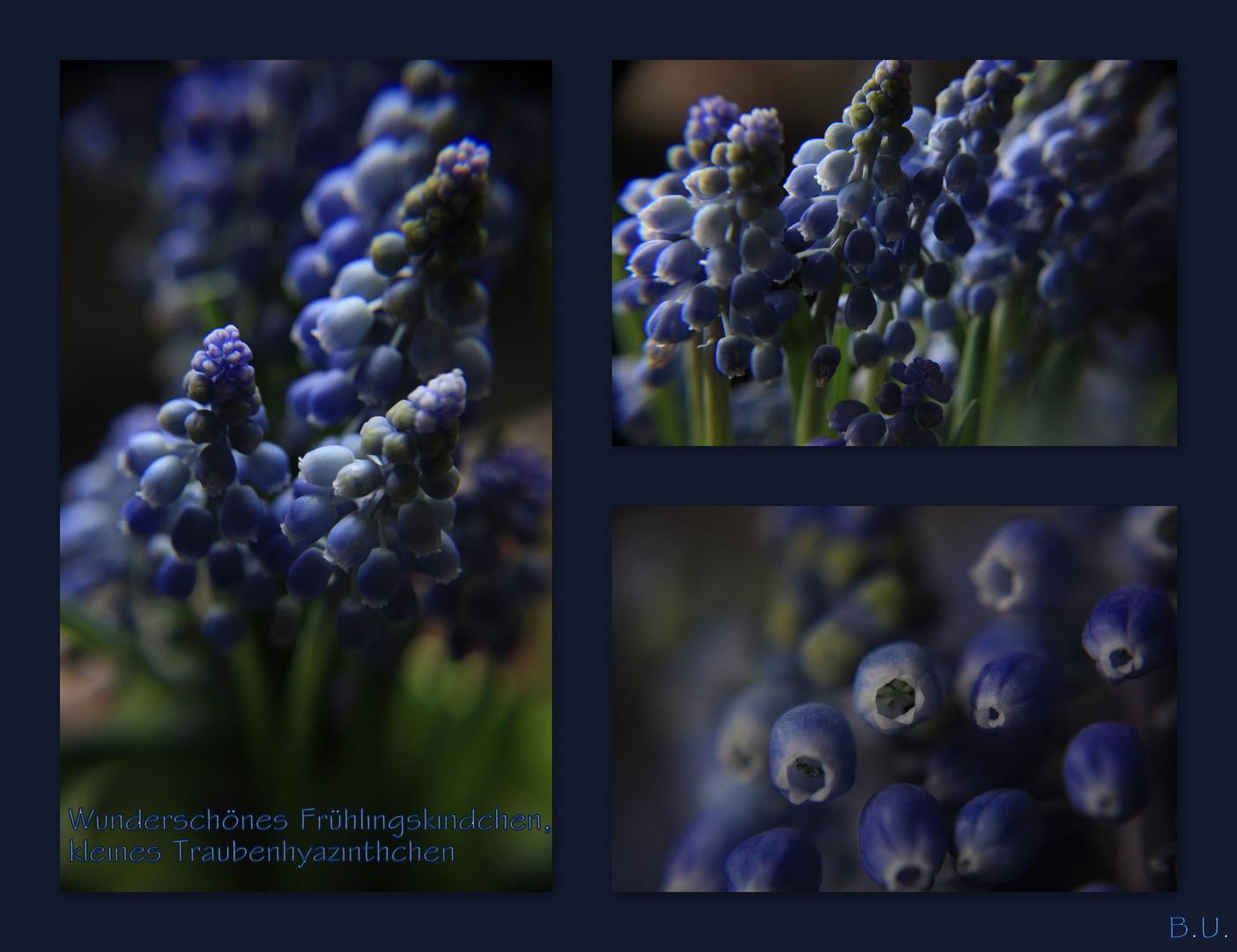 Wunderschönes Frühlingskindchen...