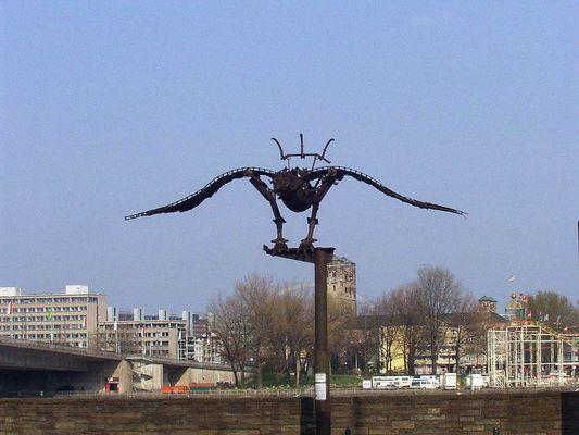 Wundervogel
