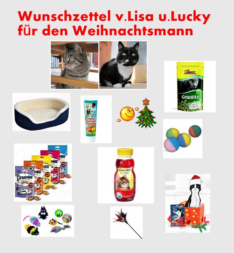Wunschzettel v. Lisa u. Lucky