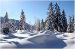 www. winter wonder world