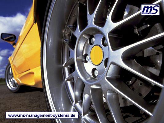 www.ms-management-systems.de
