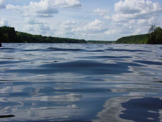 Wygonin See und Wald