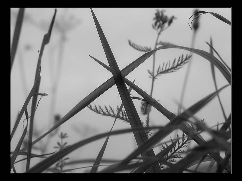 _.X._  /  Perspektiven II.