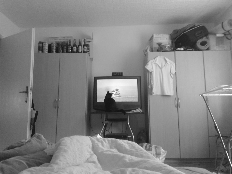 Xena schaut TV ; O)