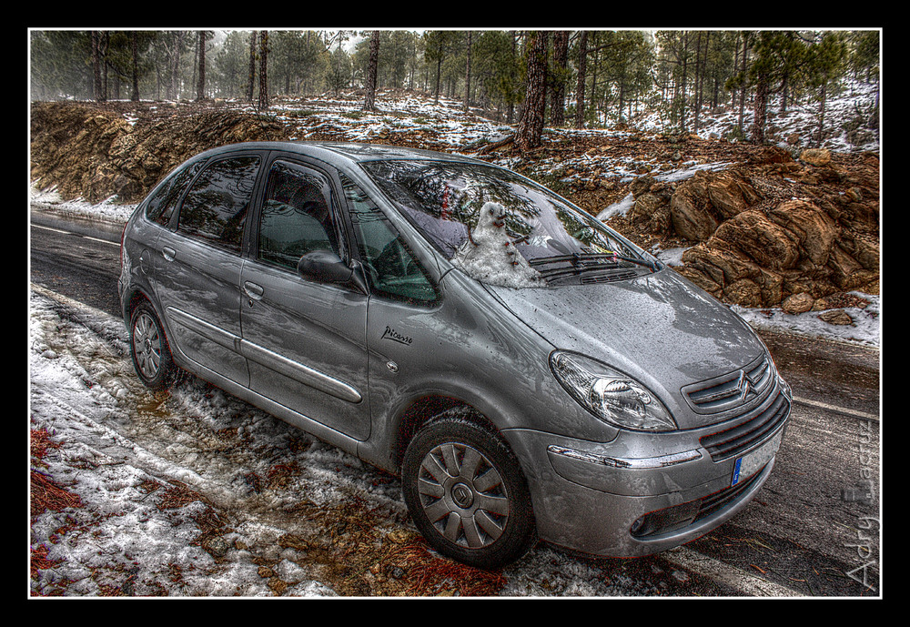 Xsara Picasso (HDR)